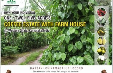 Coffee estate for sale in Sakleshpur, coorg, chikmagalur, karnataka